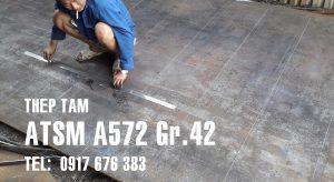 thep-tam-A572-gr42